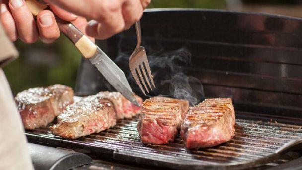 carne cruda o cocida para perros