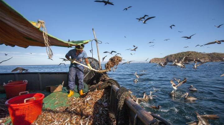 Sector pesquero a 'pique' con embargo camaronero de E.U.