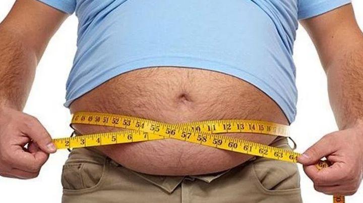 Asombroso: El estómago seria clave para ponerle fin a la obesidad de una vez por toda