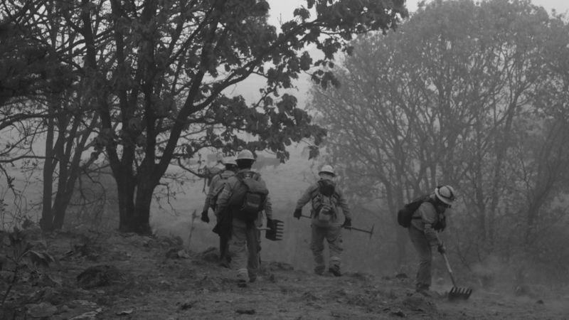 Incendio en Bosque de la Primavera se reactiva tras haberlo sofocado