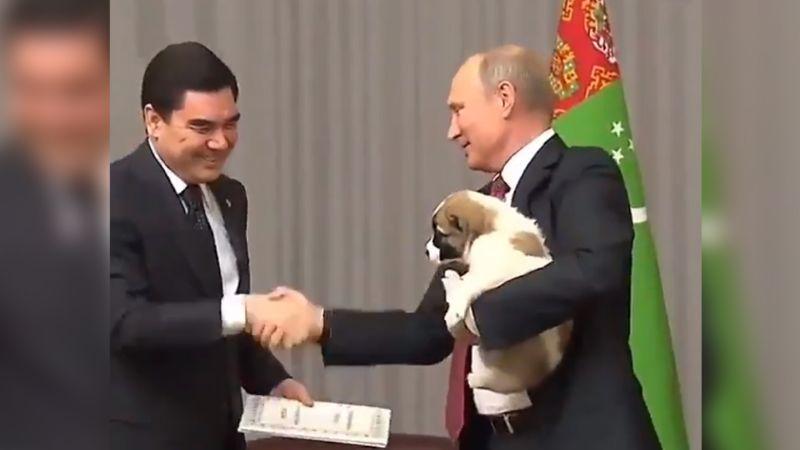 VIDEO: Vuelven a viralizar momento en el que Putin carga a un cachorro