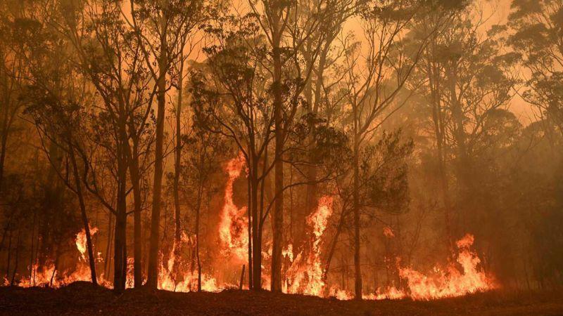 Tragedia en Australia: Sube a 27 la cifra de muertos por los incendios forestales