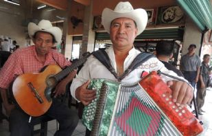 Mariachis y Norteños: Sobrevivientes de la pandemia, en este Día Internacional de la Música