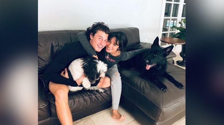 """Shawn Mendes causa furor con fuerte abrazo de """"koala"""" con Camila Cabello: """"Me encantan"""""""