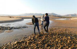 Diversidad acuática en el Puerto en riesgo por descuido