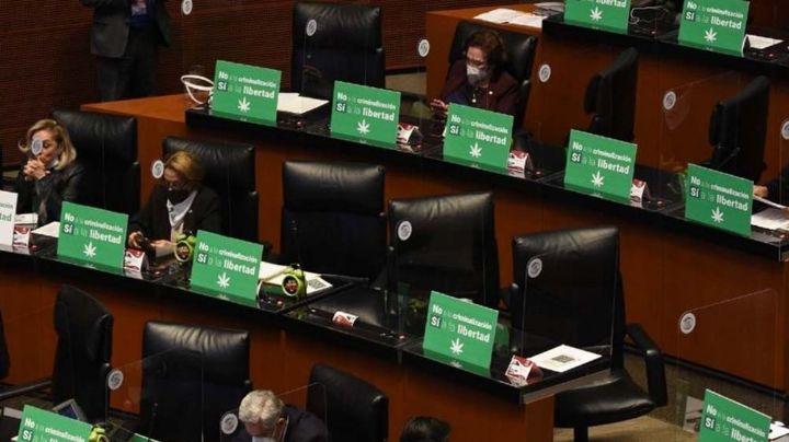 La marihuana es aprobada para uso recreativo, médico e industrial por el Senado