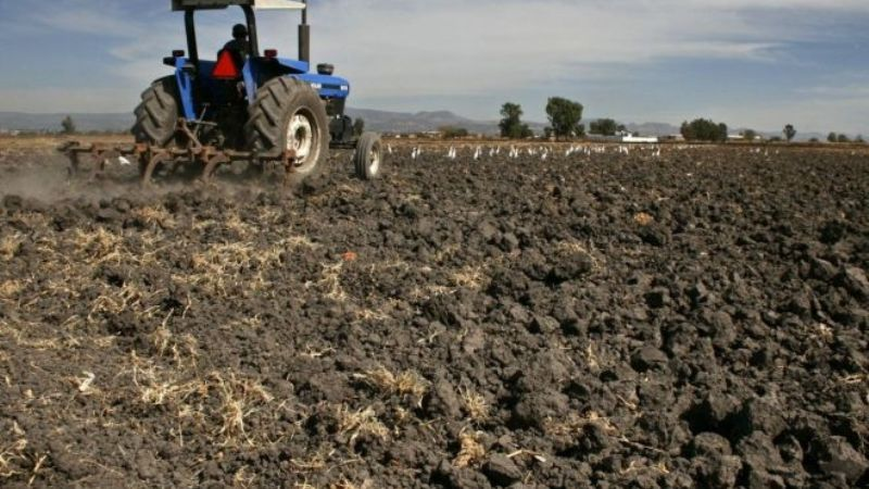 La Asociación de Organismos Agrícolas inicia con 'Agricultura Sostenible'