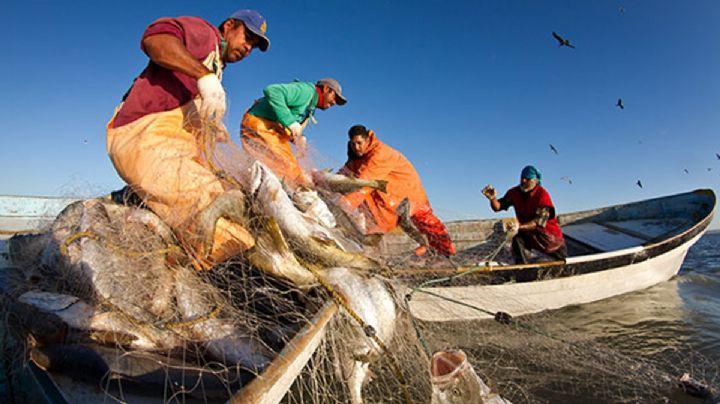 Sagarhpa y Sader acuerdan reuniones sobre embargo pesquero
