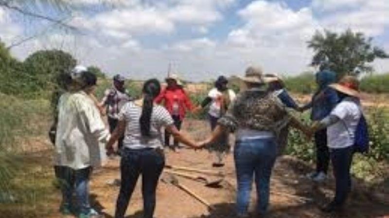 Ubican Rastreadoras otro cuerpo en baldío del barrio 'Las Palmitas' en Ciudad Obregón