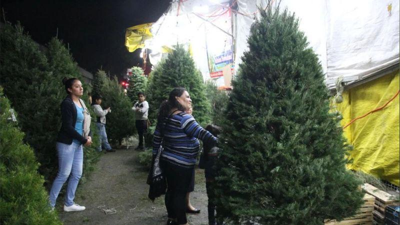 Comerciante insulta y agrede a una anciana y su nieta por tomarse una foto en un árbol de Navidad