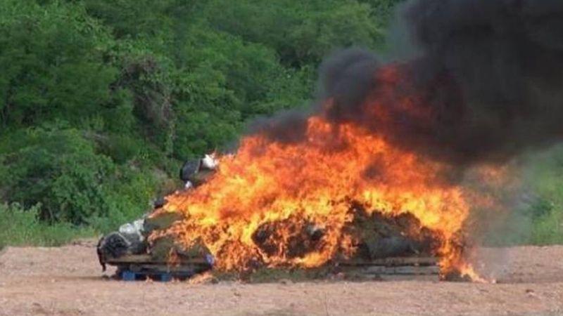 Duro golpe al narco: Destruyen más de 110 toneladas de droga en Sinaloa
