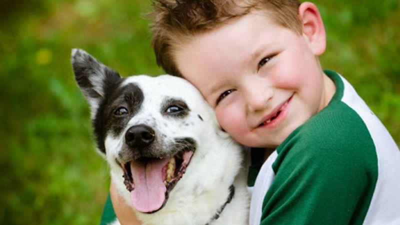 La vida de un niño pudiera ser mejor con una mascota a su lado, estos son los beneficios