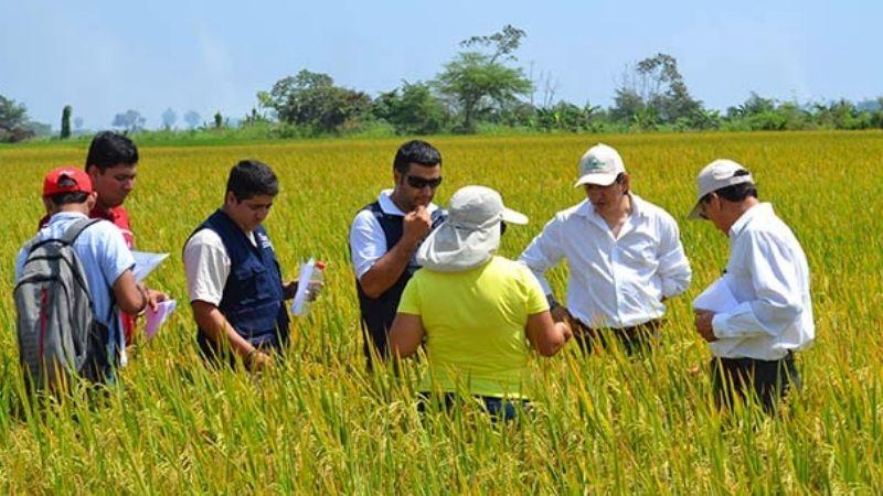 Las autoridades federales apoyará la investigación en agricultura