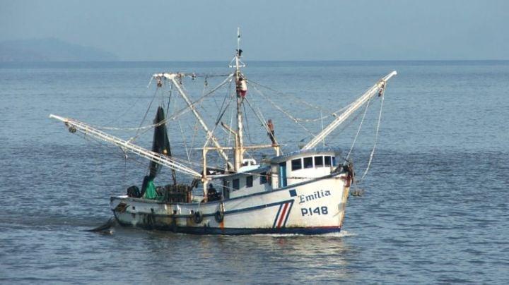 Prestadores de servicios turísticos acusan a barcos sardineros de afectar la pesca deportiva