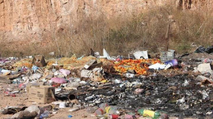 Plan de recolección de basura en Huatabampo genera oportunidad de empleos
