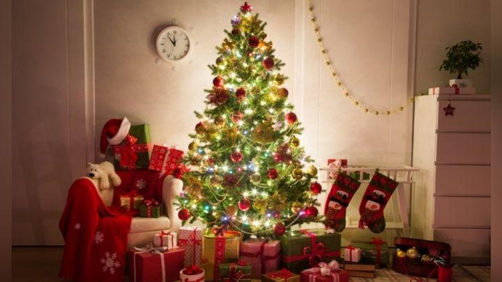 Estas son las 4 recomendaciones para evitar accidentes con el árbol de Navidad