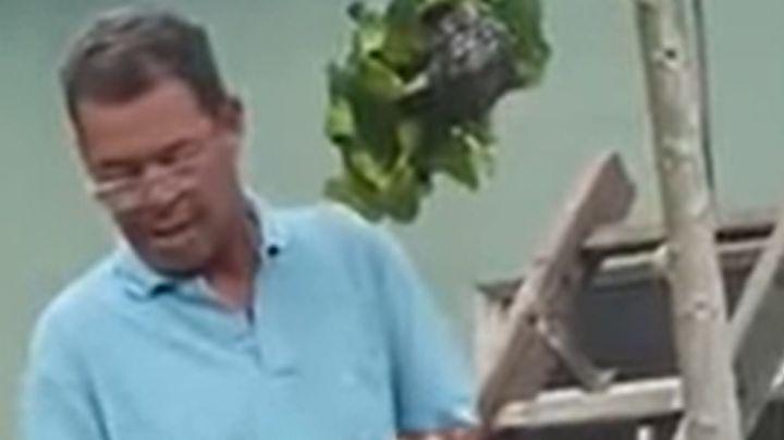 VIDEO: Hombre se hace viral tras intentar capturar un nido de avispas con una bolsa
