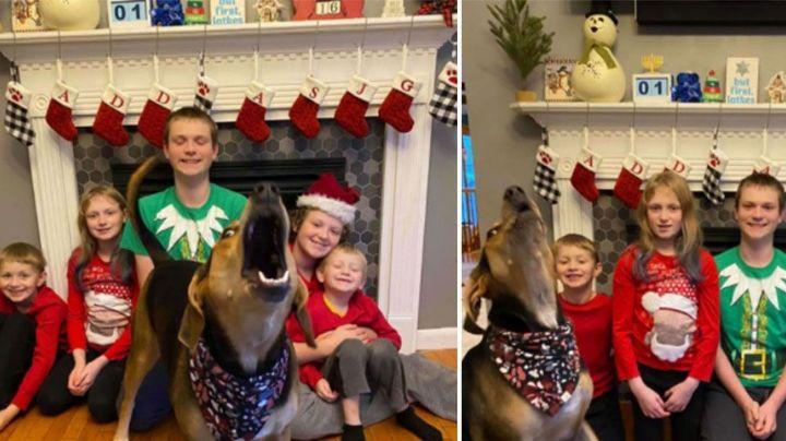 Perrita 'enternece' las redes sociales al posar durante una sesión de fotos familiar