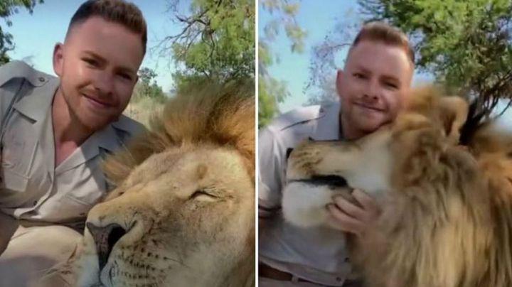 VIDEO: Hombre comparte en TikTok su 'peligrosa' amistad con un gran león