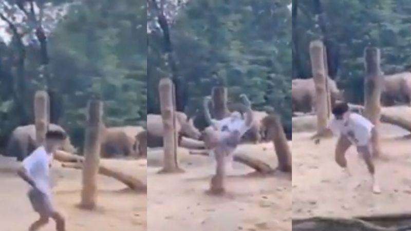VIDEO: Joven arriesga su vida al saltar al área de rinocerontes y hacer un mortal invertido