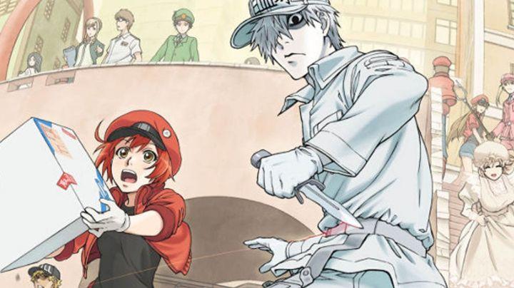 Se revela que el final del manga 'Hataraku Saibou' abordará el tema del Covid-19