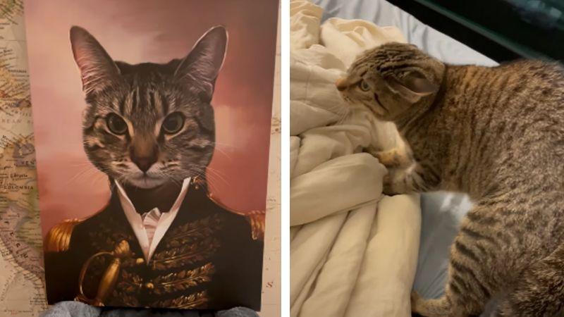 El peor regalo de Navidad: Gato se aterroriza al ver su propia imagen en retrato