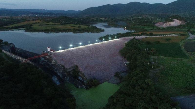 Conagua: Se invirtieron 95.5 millones de pesos en apoyo al campo de Morelos