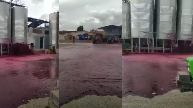 VIDEO: Más de 50 mil litros de vino es derramado y usuarios recuerdan el trágico momento