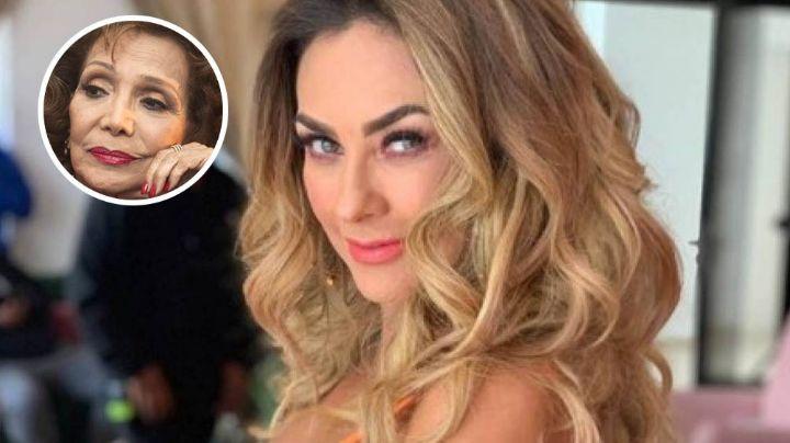 Aracely Arámbula será la encargada de protagonizar la bioserie de María Victoria