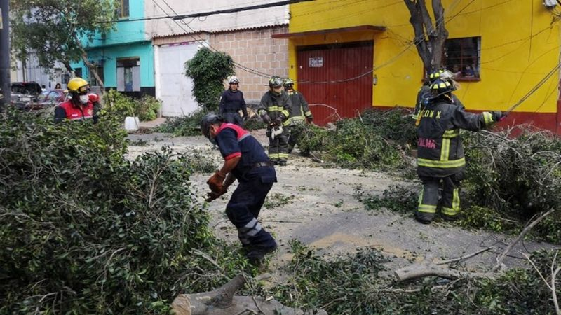 Fuertes vientos derrumban árboles y causan daños en CDMX; lanzan alerta amarilla