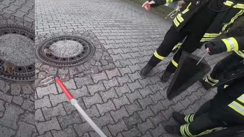VIDEO: Bomberos rescatan a una gran rata atorada en una coladera en Alemania