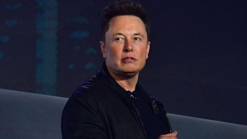 Suspenden fábrica de Tesla en Alemania por hibernación de serpientes