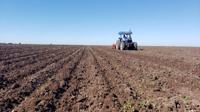 Valle del Yaqui, a tiempo de recuperar el camino de la agricultura sustentable
