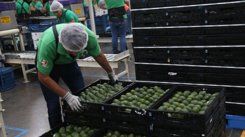 Costa Rica se pone la 'soga al cuello' al cortar lazos comerciales con México