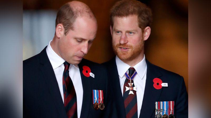 Harry y William unidos por el dolor: Tía de Lady Di fallece a los 99 años