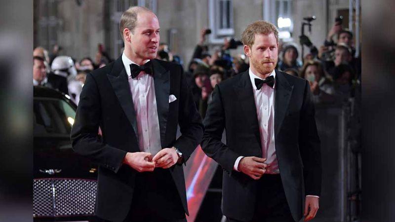 William y Harry incumplen promesa que les pidió la Princesa Diana antes de morir