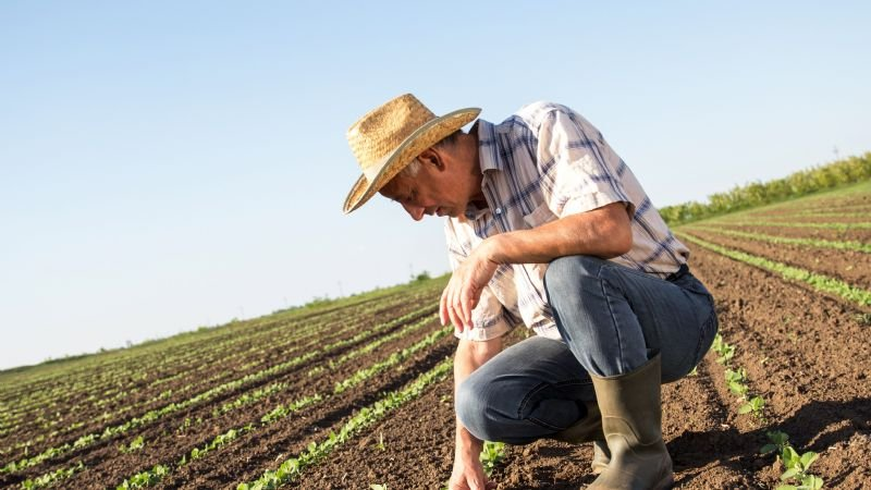 Secretaría de Campo abre programas para los productores de Mexicali