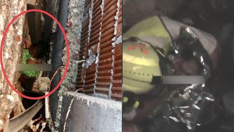 VIDEO: Mujer lanza viva a su recién nacida entre muros de 2 casas en CDMX