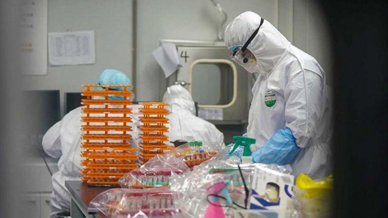 Investigadores chinos identifican dos tipos de coronavirus Covid-19
