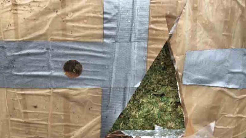Militares aseguran más de 15 toneladas de droga en retén de Sonora