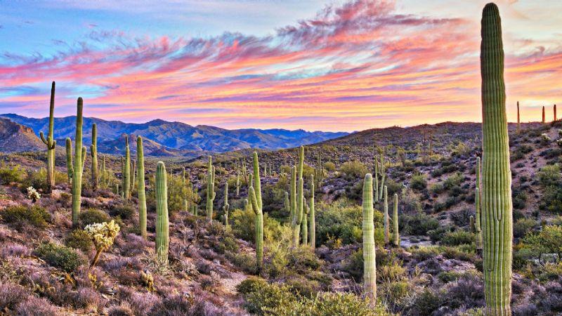 ¡Toma nota! Este es el pronóstico del clima de hoy, martes 6 de julio del 2021, en Sonora