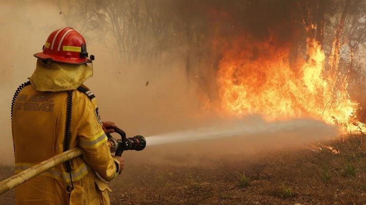 Se registran seis personas sin vida en un incendio forestal en Oaxaca
