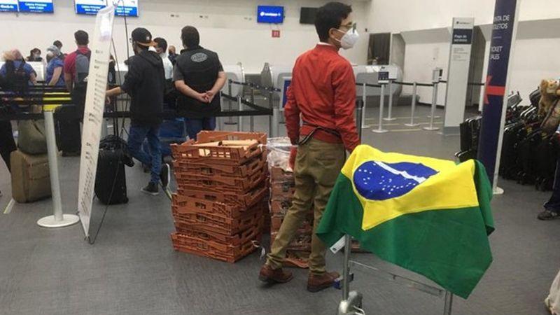 En Brasil, han sido detectados los dos primeros casos de la cepa británica del coronavirus