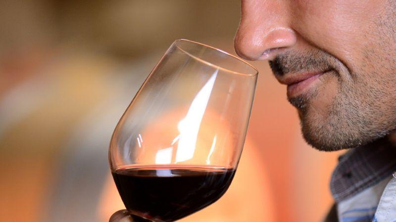 ¡Sorprendente hallazgo! El vino podría ser un tratamiento efectivo contra el Covid-19