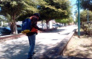 En Huatabampo buscan no ceder ante el coronavirus y sanitizan espacios públicos