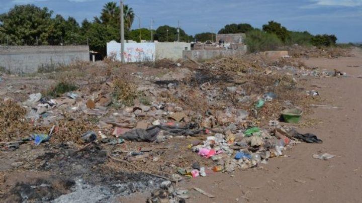 Vecinos de Navojoa denuncian basurero clandestino en los Laureles