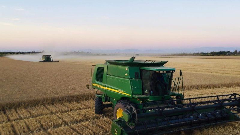Jorge Russo exige una solución para los productores de trigo panificable