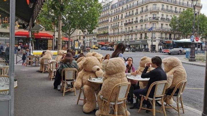 ¡Tomen nota! Con gigantes osos de peluche, así respetan el distanciamiento social en Francia