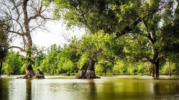 """Cesar Granich: """"Rescatar la naturaleza es una responsabilidad de todos"""""""