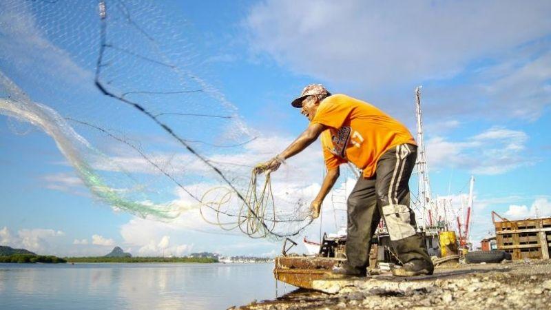 Acuacultura y pesca impulsan la economía mexicana a pesar del Covid-19